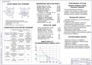 Технико-экономическое обоснование проекта А1