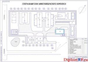 Генеральный план животноводческого комплекса (формат А1)