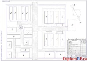 Генеральный план агрофирмы (формат А1)