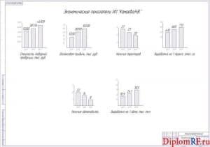 Схема экономические показатели (формат А1)